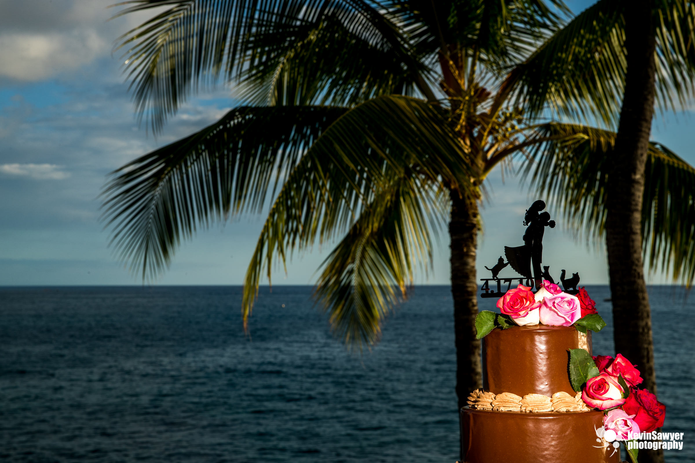 hawaii-big-island-photographer-photography-destination-details-cake