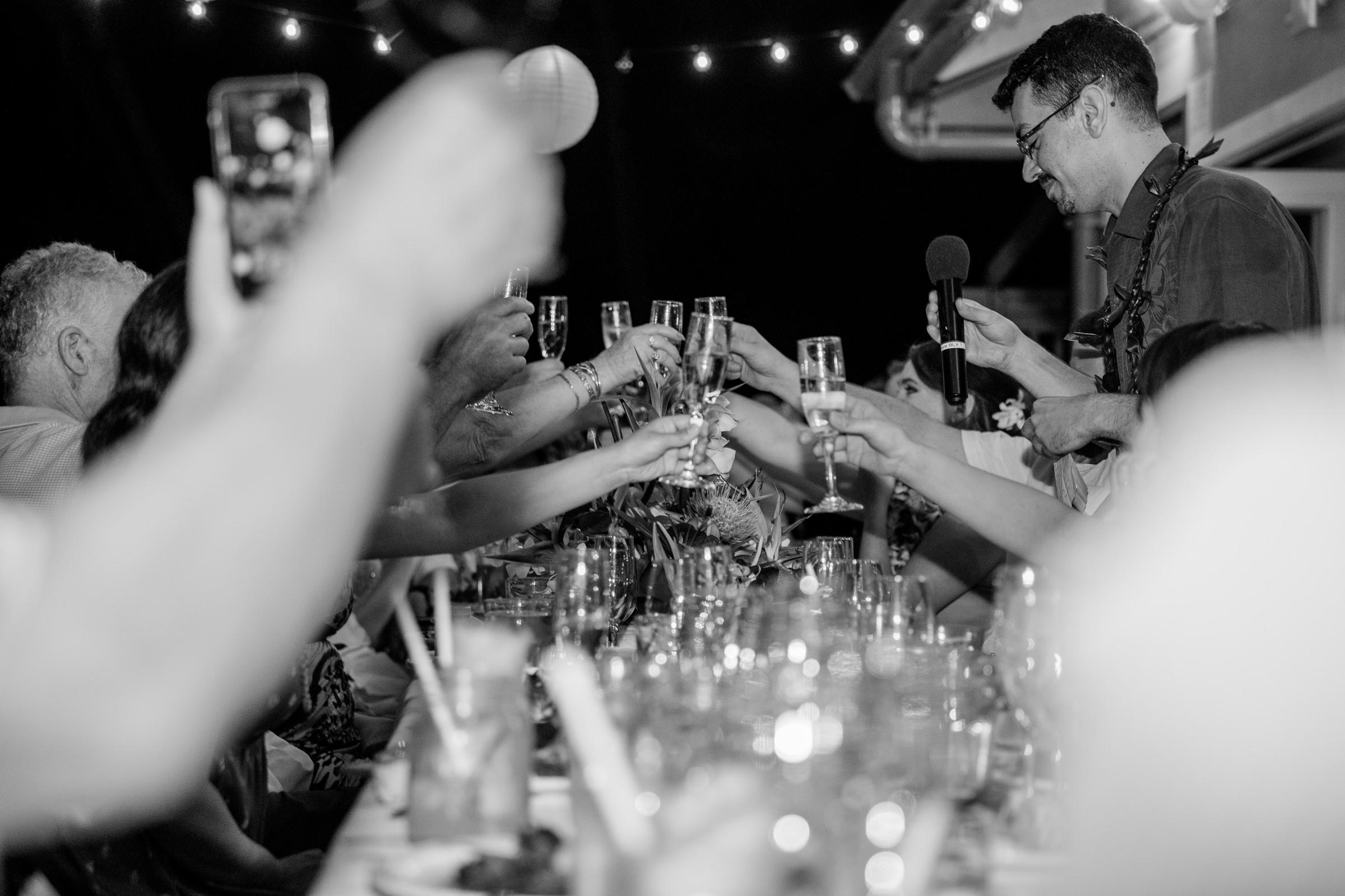 wedding-photographer-photography-destination-hawaii-lake-tahoe-reception-toasts