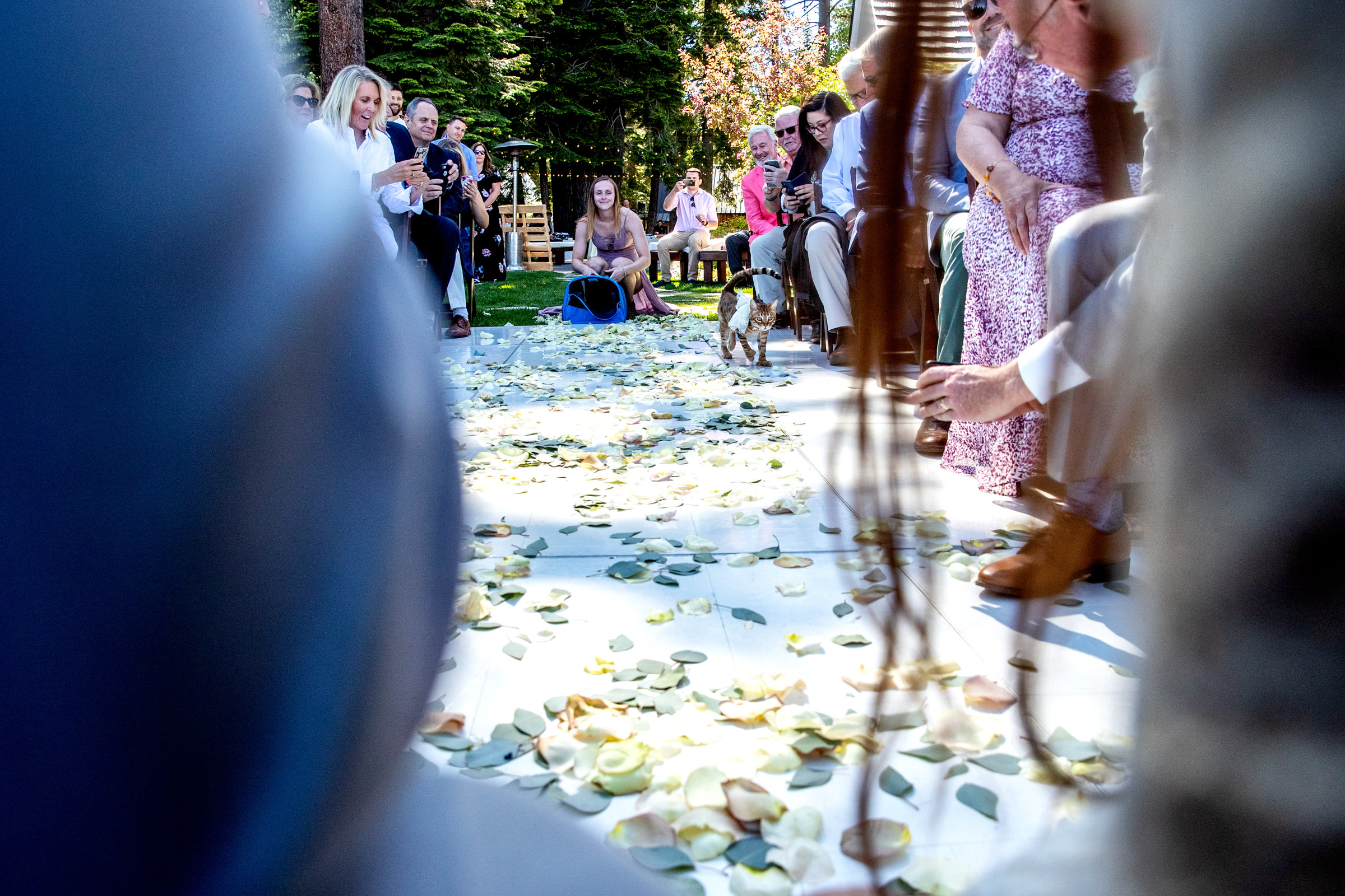 lake-tahoe-truckee-wedding-photographer-photography-top-best-homewood-city-bride-groom