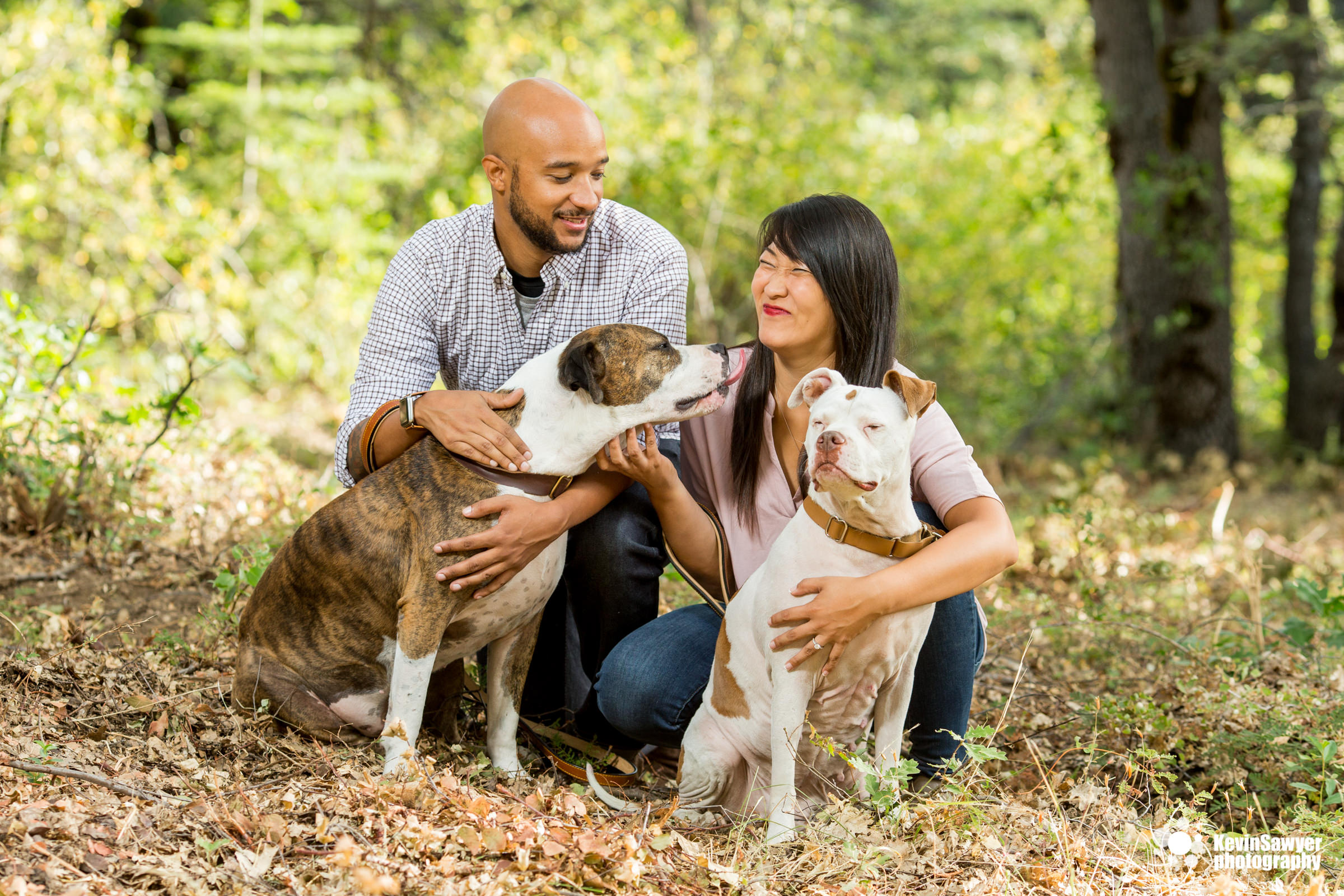 lake-tahoe-truckee-reno-engagement-portrait-dog-pet-photographer-photography