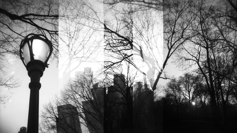 Central Park at Dusk, Double Exposure