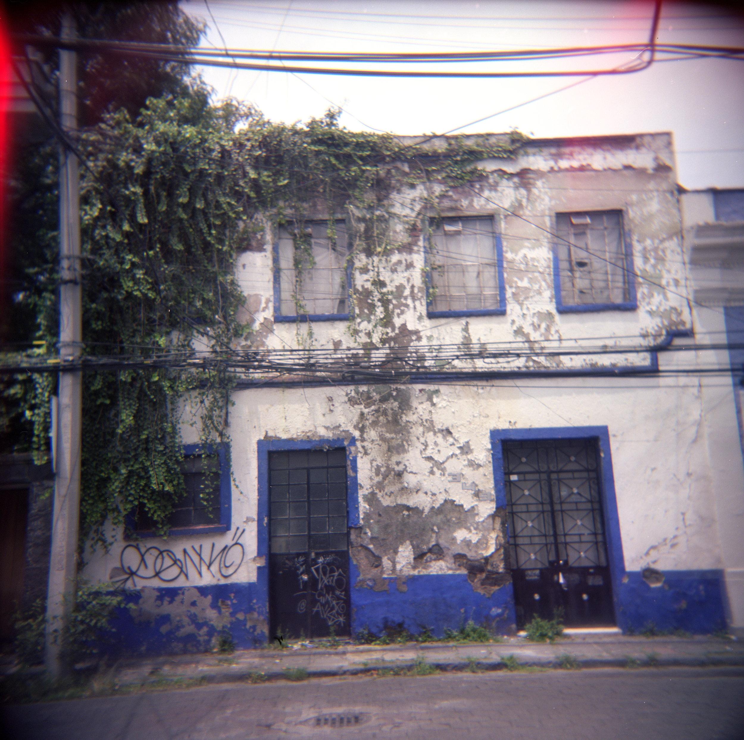 Vines, Coyoacan