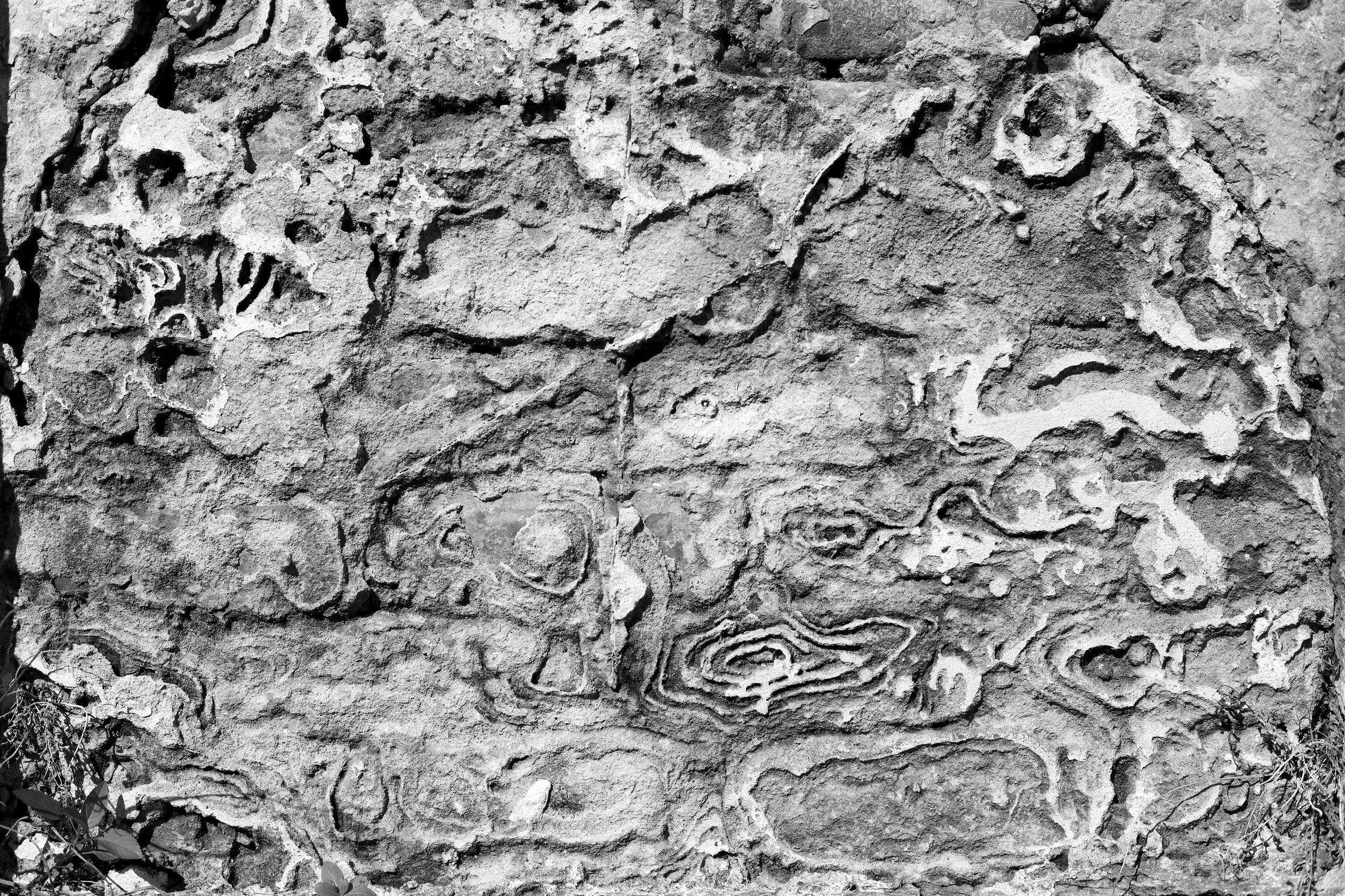 Plaster Layers Detail
