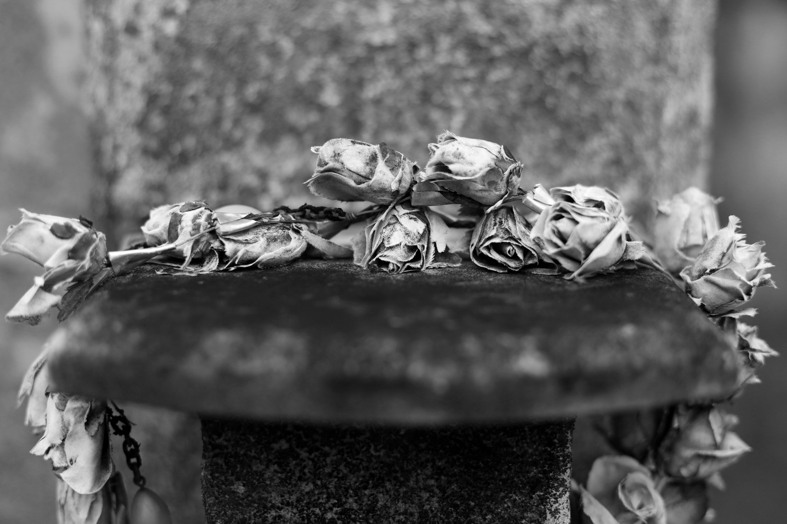 Flower Crown, Black & White