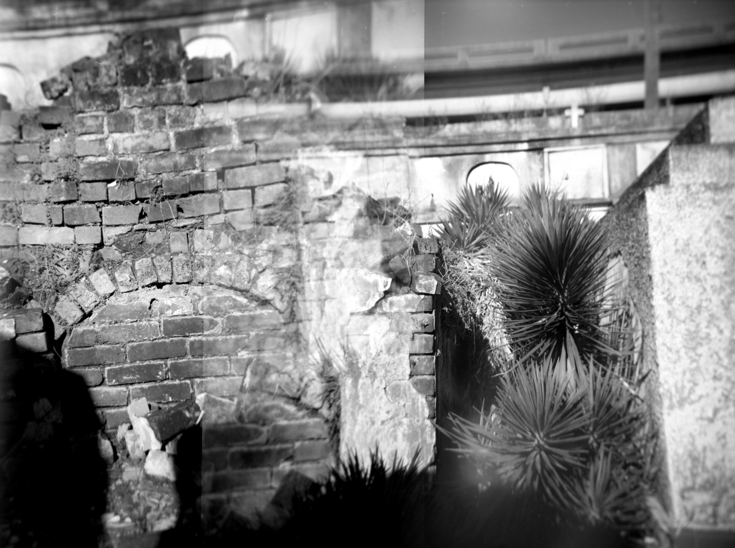Brick & Palms