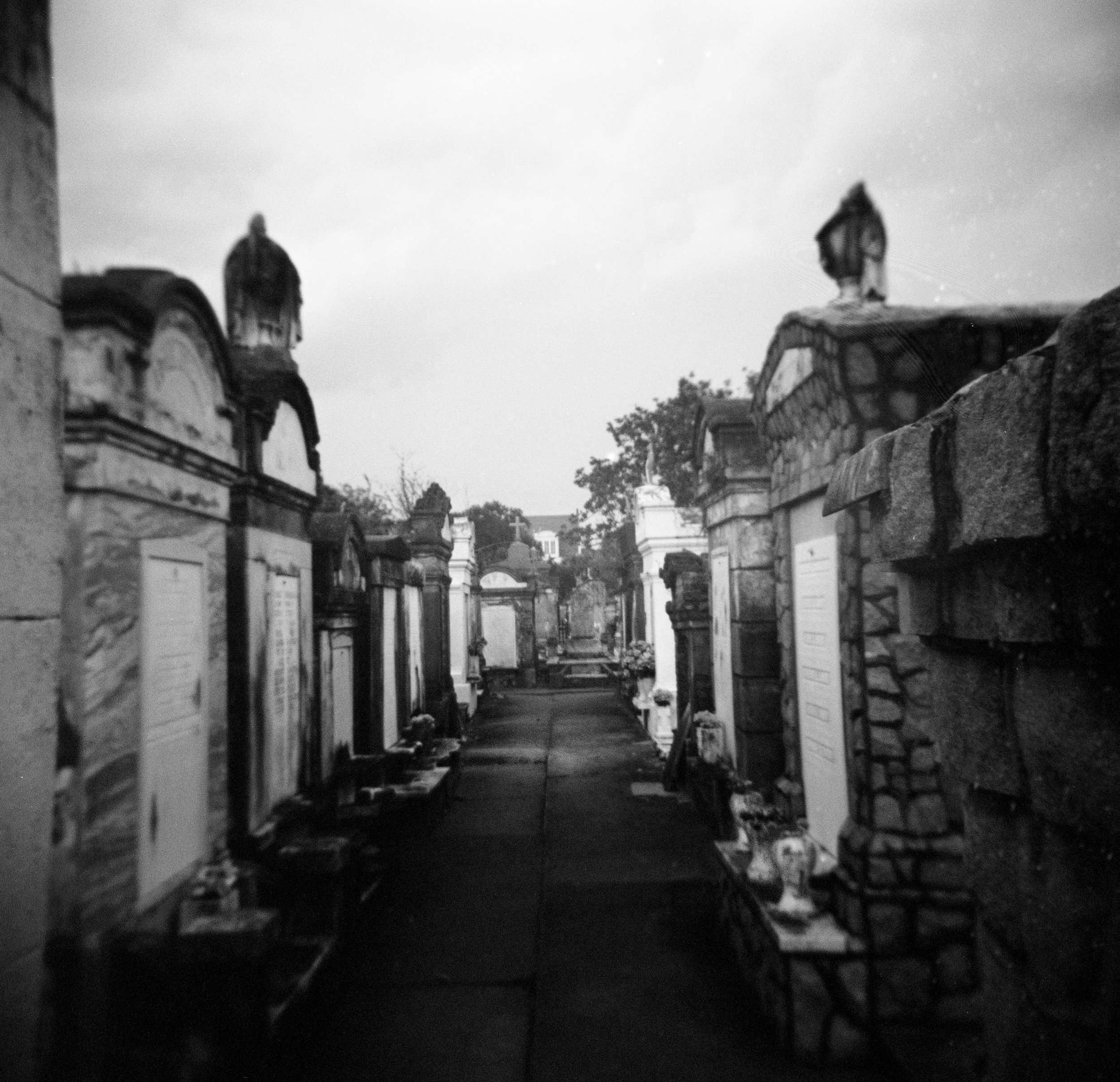 Burial Rows on Film