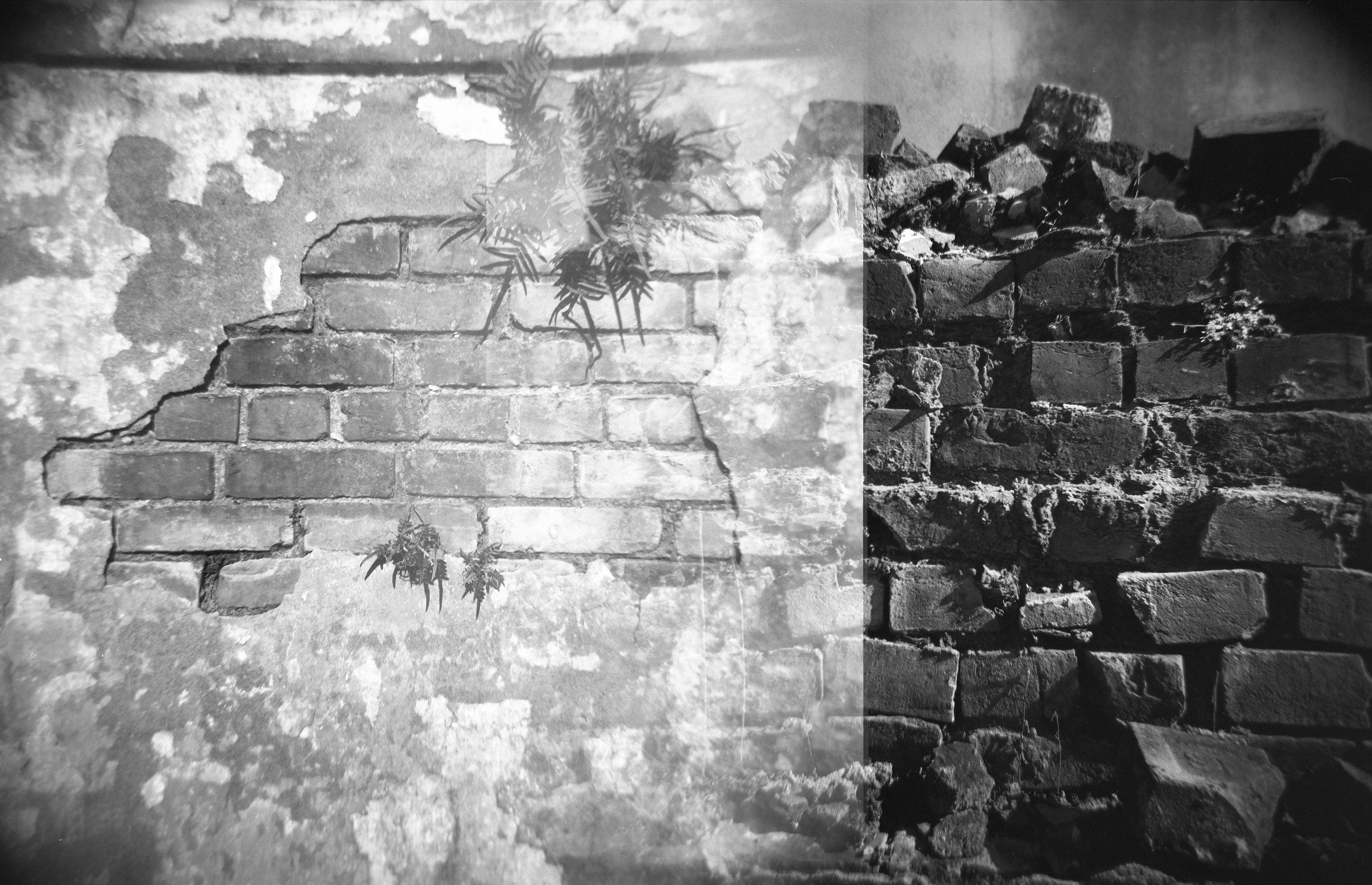 White Brick, Black Bricks