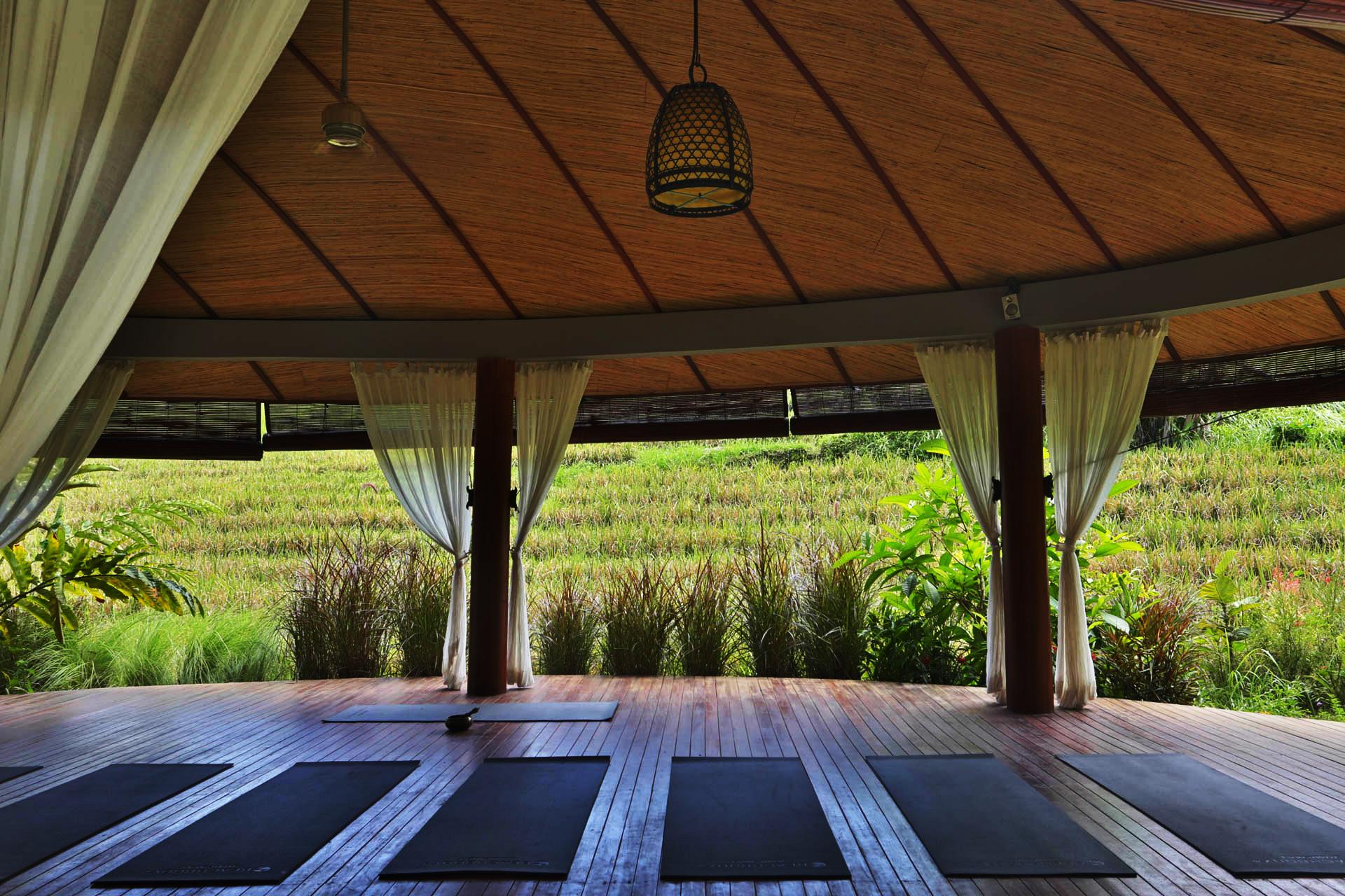 yogashala-ricefieldsview.jpg