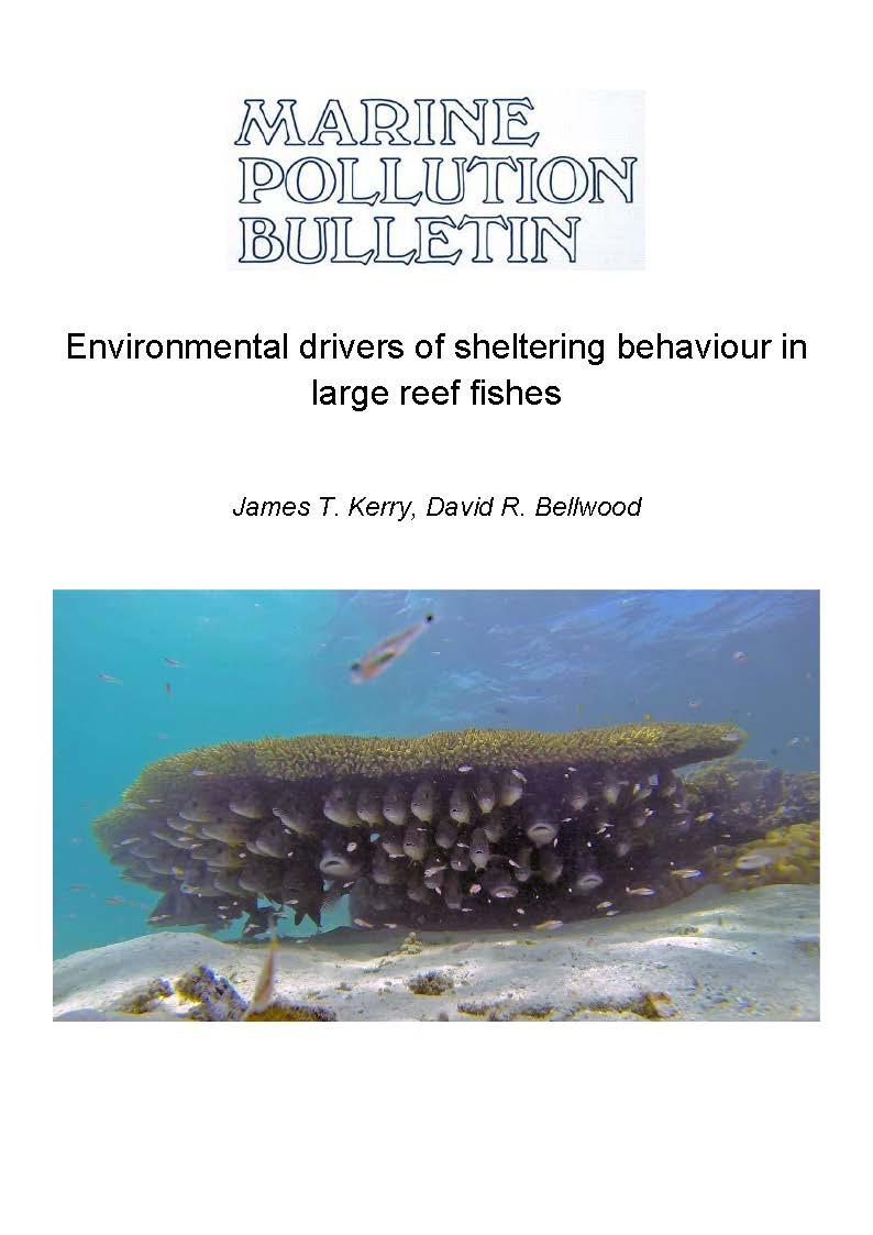 Kerry and Bellwood 2017 (Marine pollution bulletin).jpg