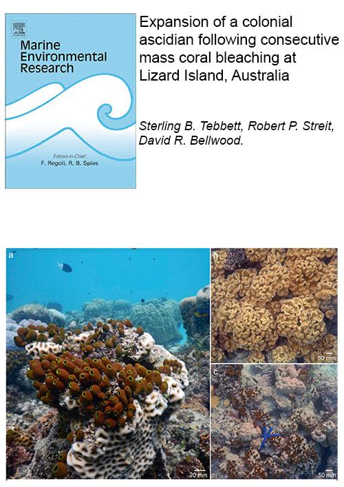 Tebbett_et_al_2019-marine_environmental_research.png