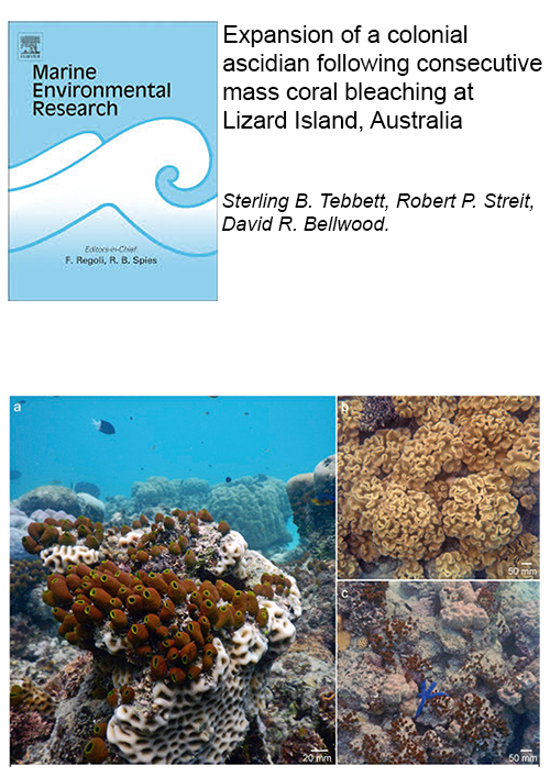 Tebbett_et_al_2019-marine_environmental_research.png