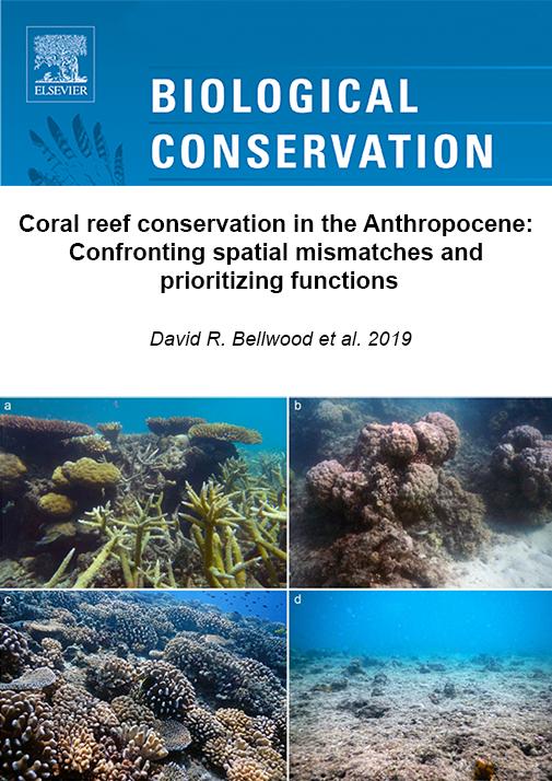 Bellwood_et_al_2019-biological_conservation.png