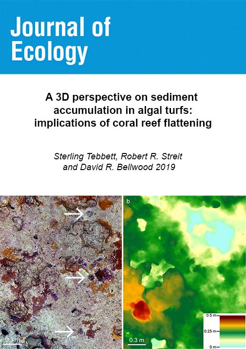 Tebbett_et_al_2019-journal_of_ecology.png