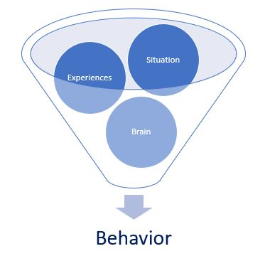 brain behavior graphic.JPG