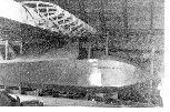 Manuels-Crested-Wren-1931.jpg