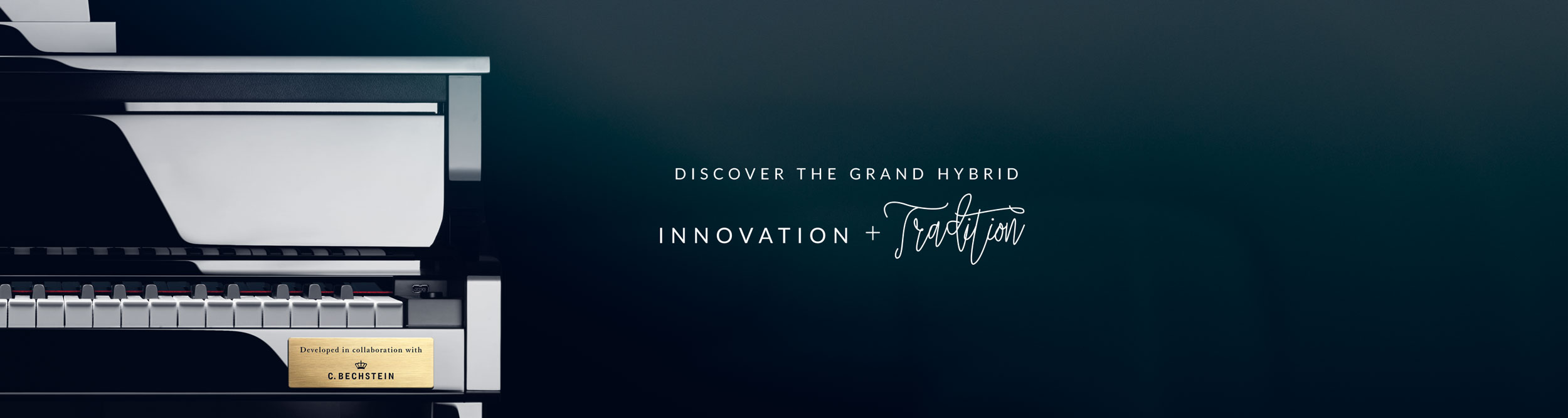 Discover-Grand-Hybrid-Banners.jpg