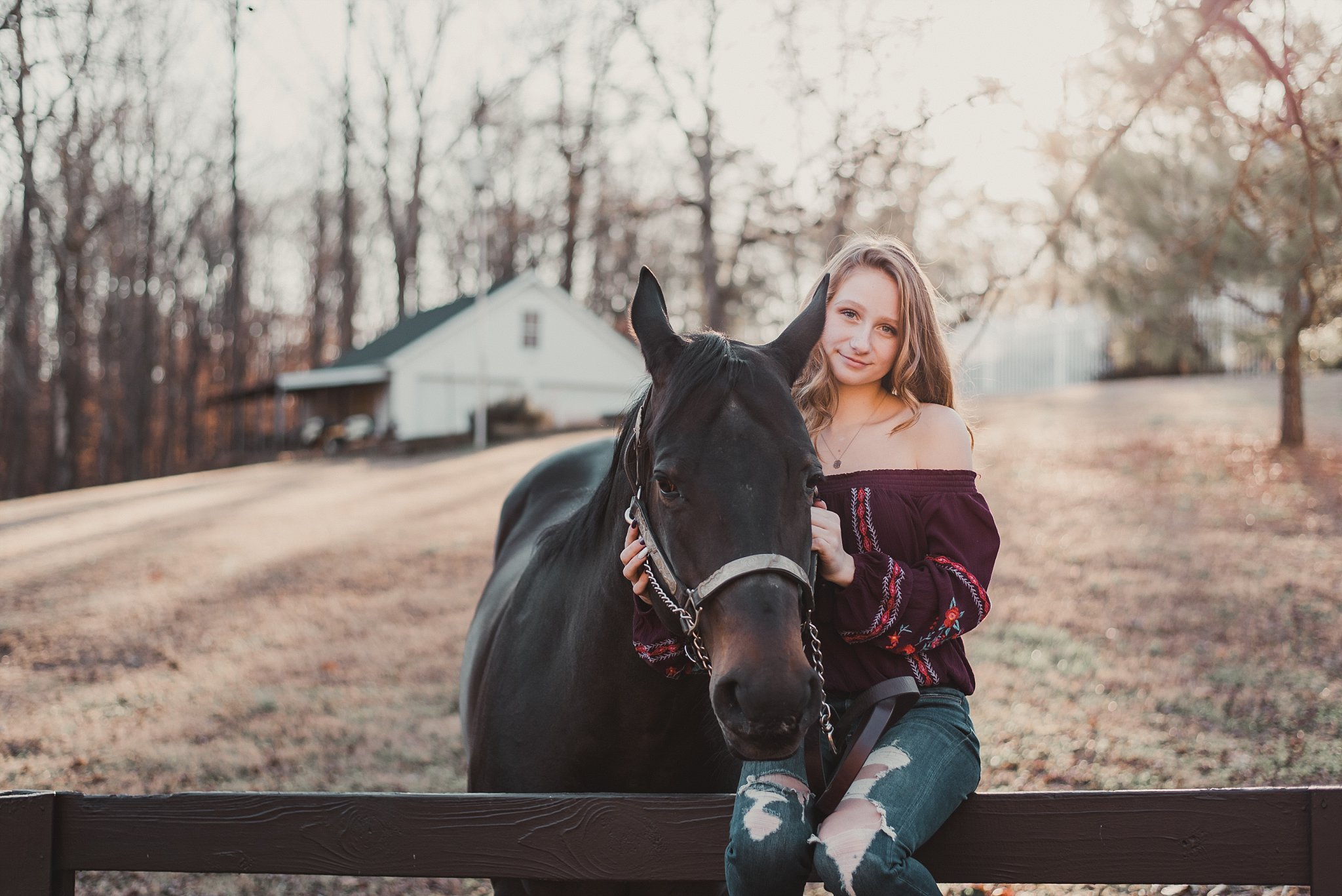 girl sitting on fence with horse