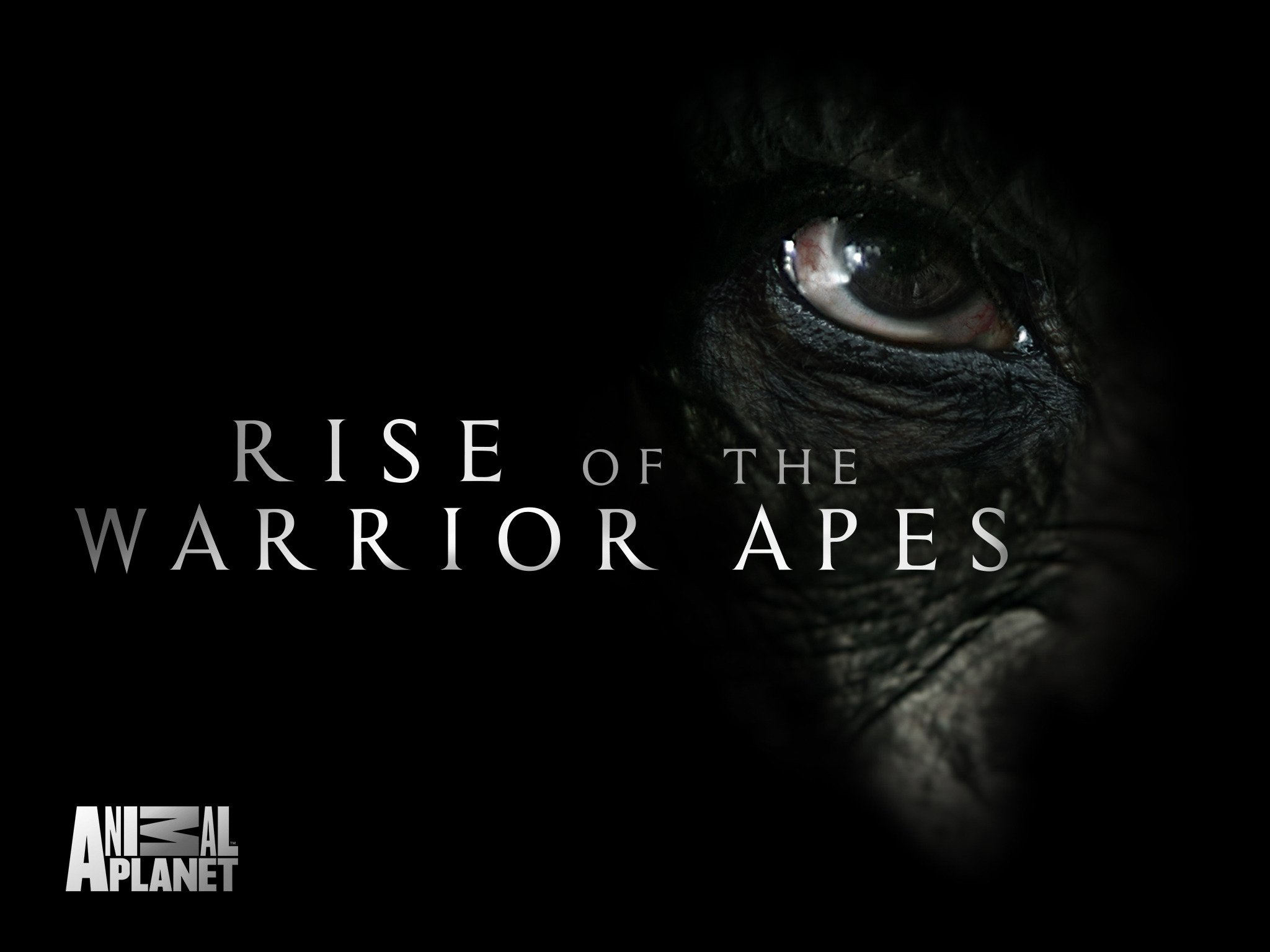 Rise of Warrior Apes.jpg