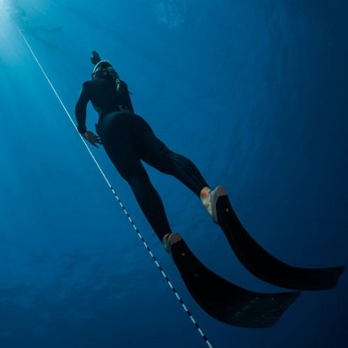 Freedive 2.jpg