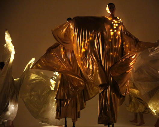 Optioscopes in gold, stilt performance 5, Divine Company.jpg