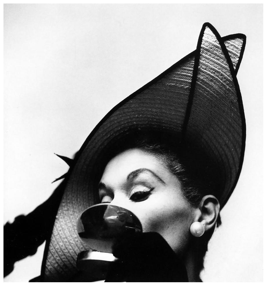 lisa-fonssagrives-photo-by-irving-penn-new-york-1949