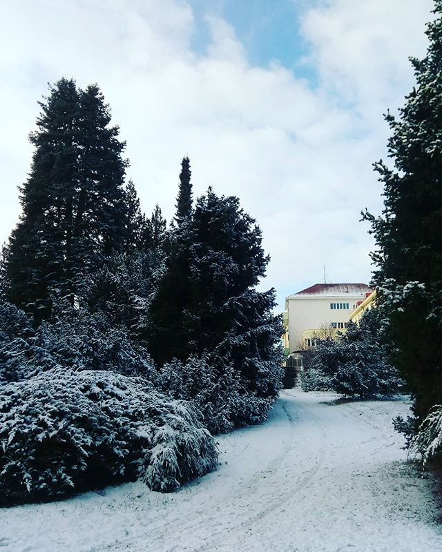 A perfect winter's morning in #Prague. This was taken at a biological/agricultural science facility in #Praha 6, one of my favorite places and groups to teach.  #CzechRepublic #cz #europe #snow #winterwonderland #december #wintermorning #treesinsnow