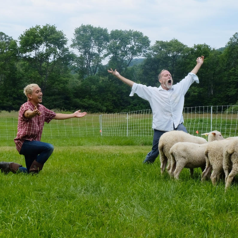 """NHPR: At """"Doggie Hamlet,"""" The Play's The Thing (And So Are The Sheep)    The scene is a fenced-in enclosure, tucked away in the hills in southeastern Vermont. Inside, choreographer Ann Carlson leads a rehearsal with four dancers, a flock of sheep and a border collie."""