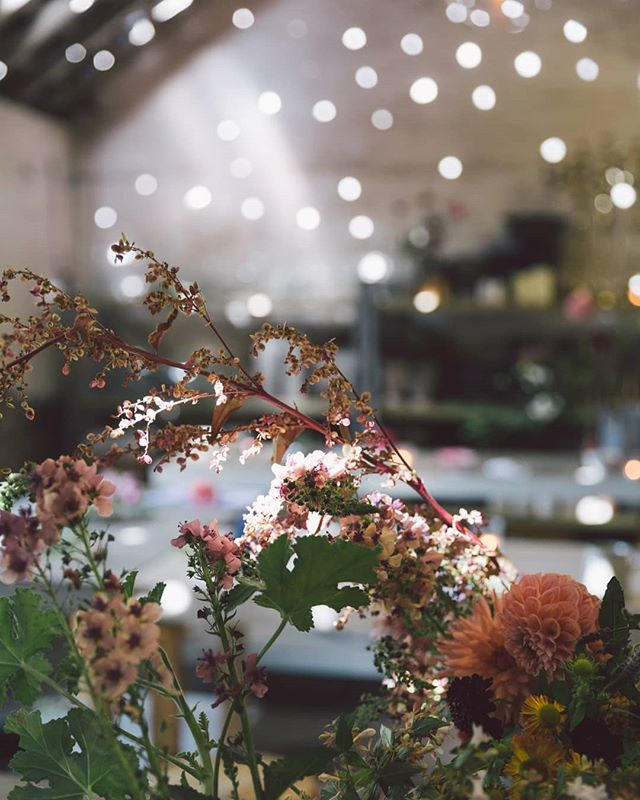 I was chatting about photographing pops of magic light at a workshop I was teaching this week made me think about this day and that sparkly light. Hopefully we get some this weekend to add some magic we've been missing over these few wet, dark days! 🌟💫🌟 Shot for @simplybyarrangement @astilllife_workshops @thewilde_