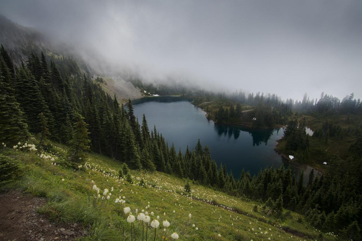 Tolmie Peak in the fog