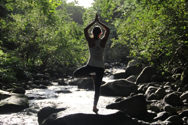 Barbara Alfonzo Yoga