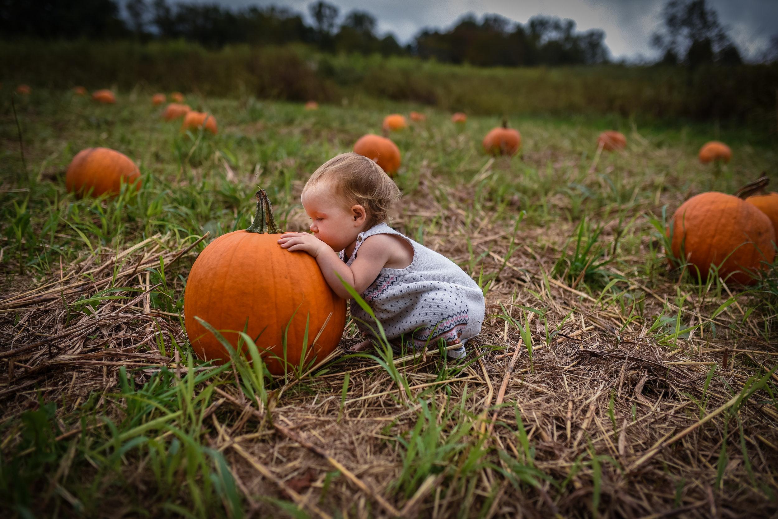pumpkin-8.jpg