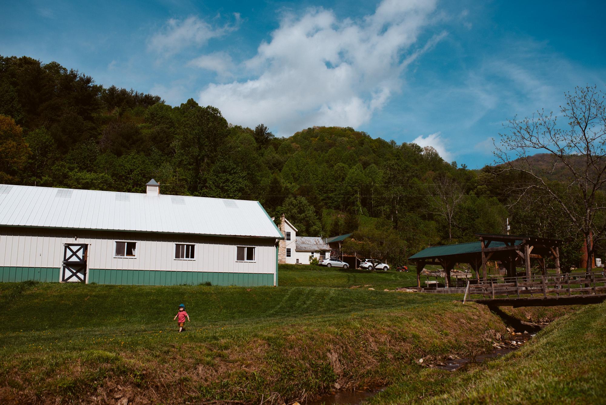 farm6-3.jpg
