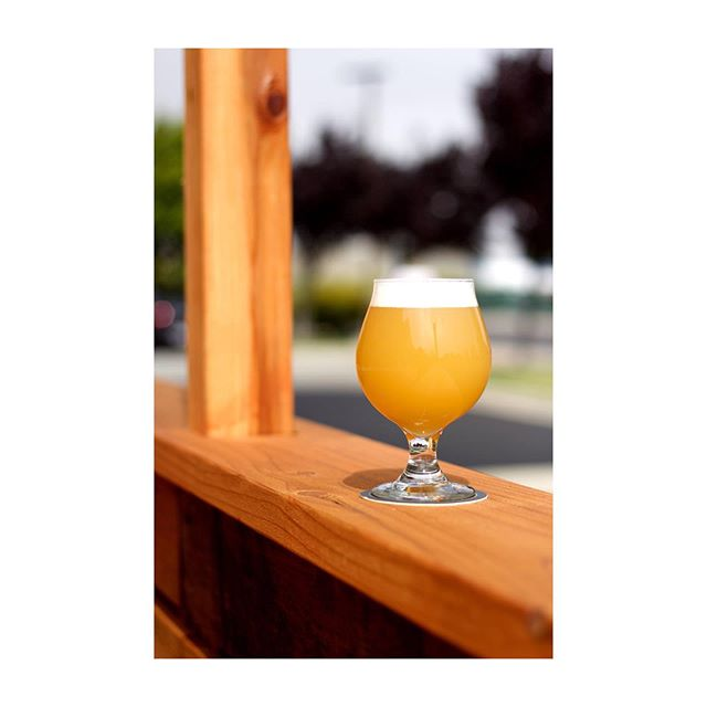 """☀️SUMMER HAZE ALERT☀️ ⠀⠀⠀⠀⠀⠀⠀⠀⠀ Introducing: """"Faugust,"""" Hazy Pale Ale, 5.8%: We get late summers here in Richmond. Summer doesn't seem to get underway in earnest until August and seems to peak around late Aeptember. That's fine because we also seem to avoid a lot of the fog layer that keeps Berkeley's summer days grey until until about 2 pm. Yet sometimes those fog-logged August mornings persist, and it's not until the day is nearly standing on tip toe at noon that you start to see the sun burning through. In any event, a summer day regardless of the weather deserves a summer beer and we can think of nothing better than a foggy pale ale that's bright and of moderate but respectable strength. Wakatu and Mosaic – one of our favorite hop combos – lead the way with notes of key lime, pine, and orange. This summer crusher is good for fog and sun. ⠀⠀⠀⠀⠀⠀⠀⠀⠀ YES TO GROWLERS/CROWLERS"""
