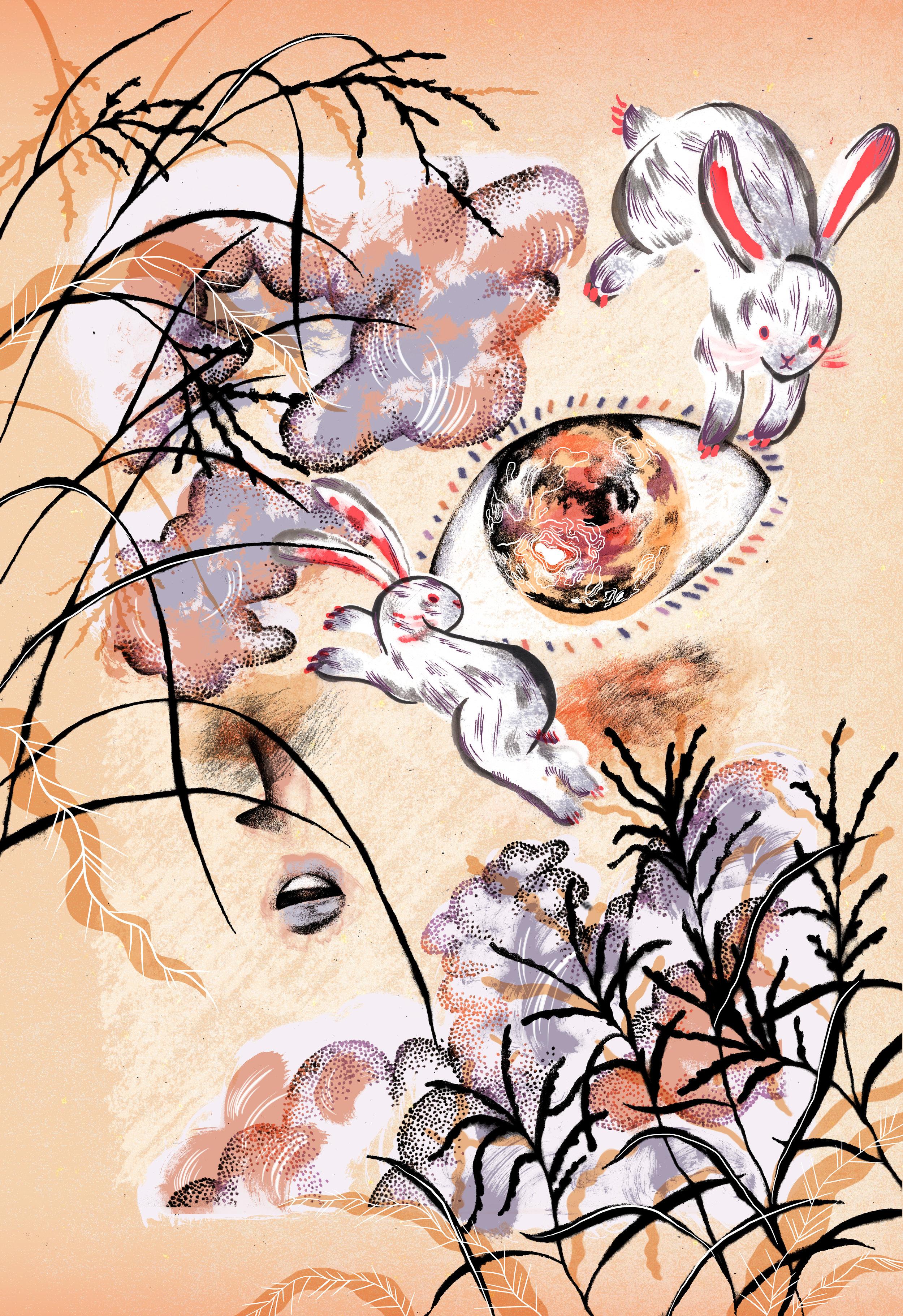 Rachel-Wada---Project-40---Rabbit-Moon--WEB.jpg