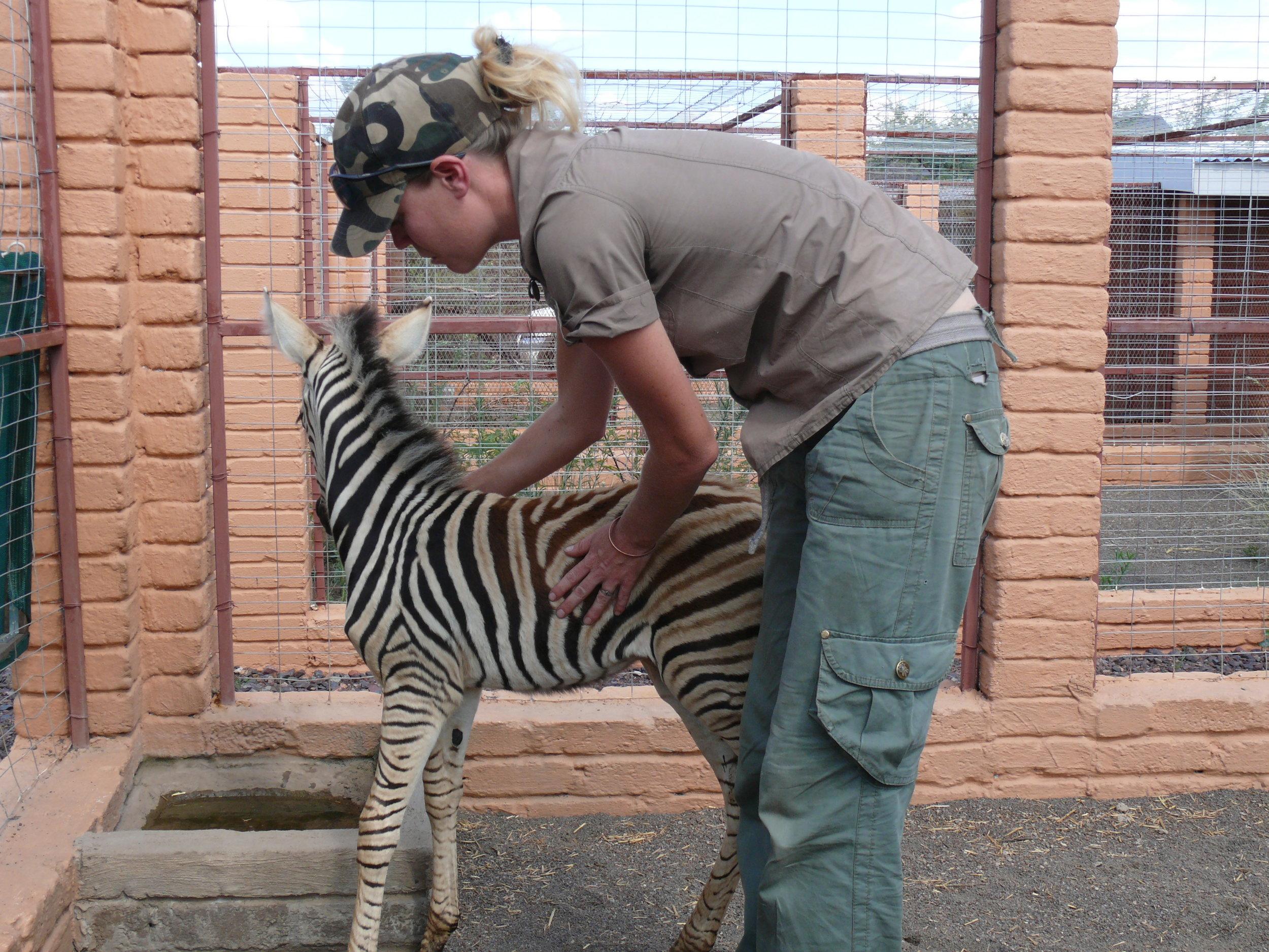 Cara and Zebra.JPG