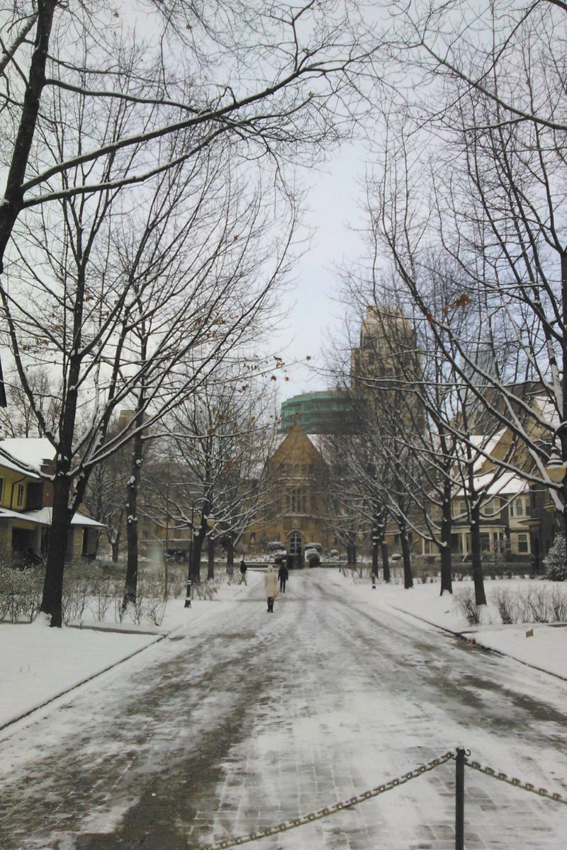 University, Toronto downtown