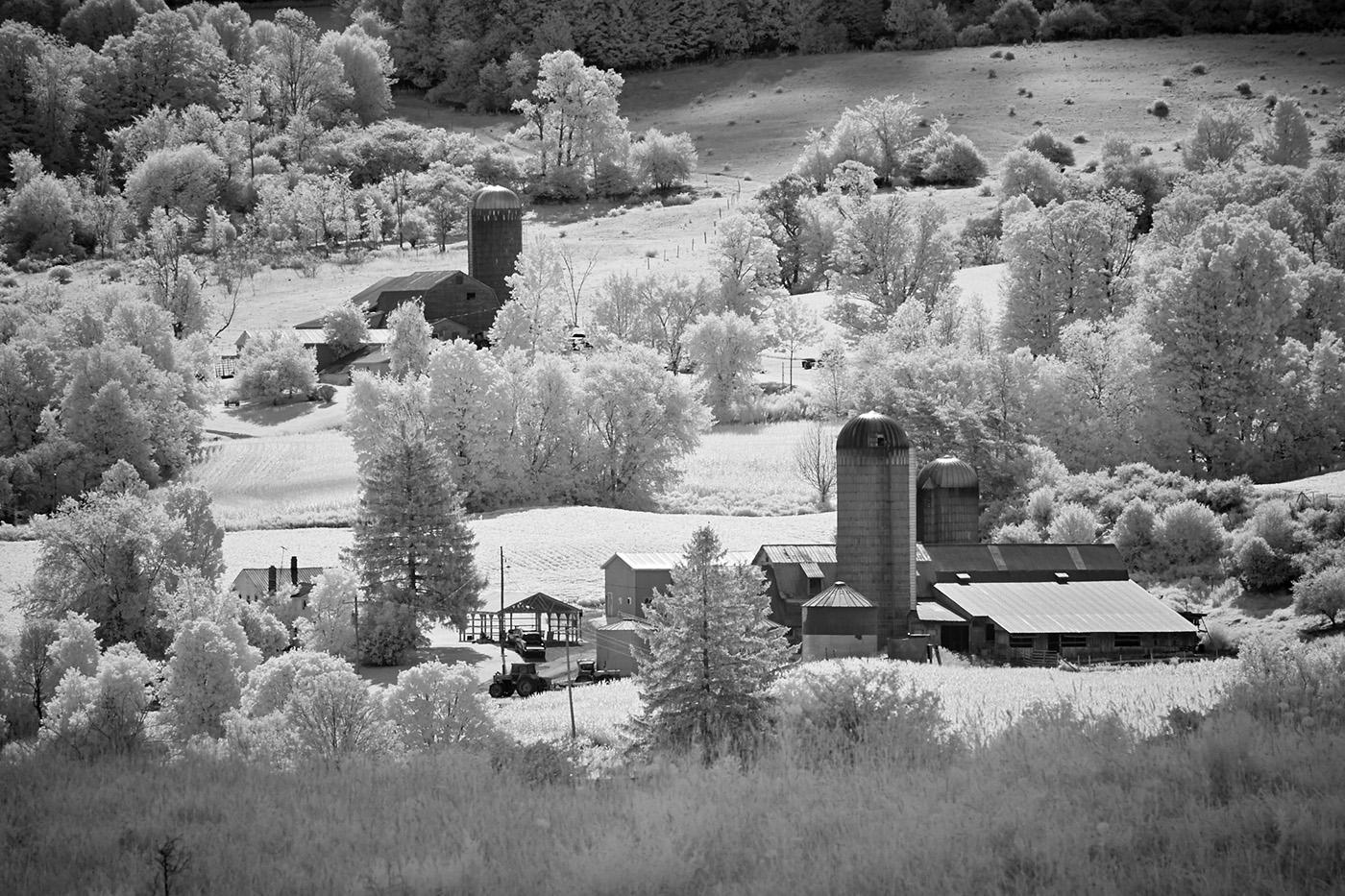 Farm in Morning, Hamilton, New York