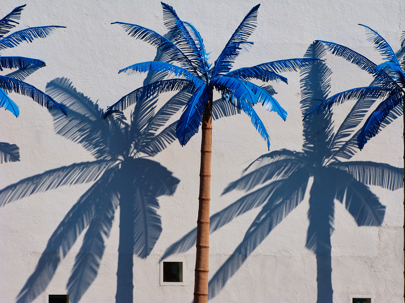 Artificial Palm Trees, Wildwood, New Jersey
