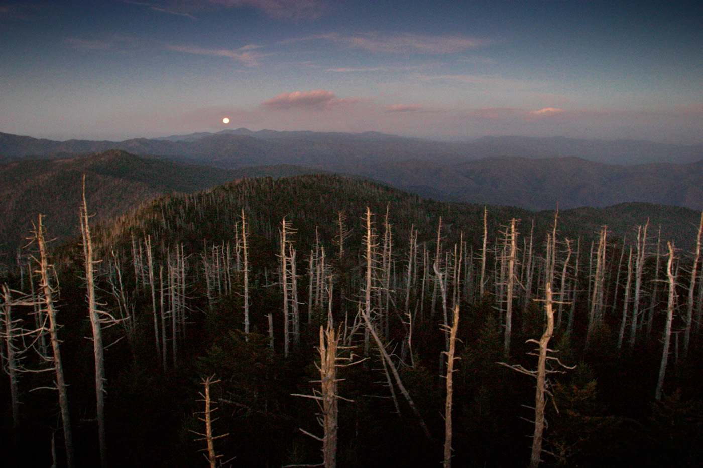 Tennessee Moonrise, Clingmans Dome, Great Smoky Mountains National Park, Gatlinburg, Tennessee