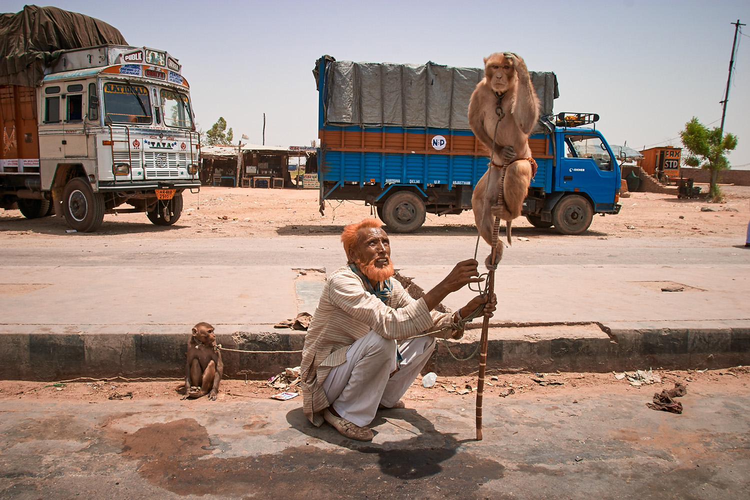 Street Hawker with Monkey