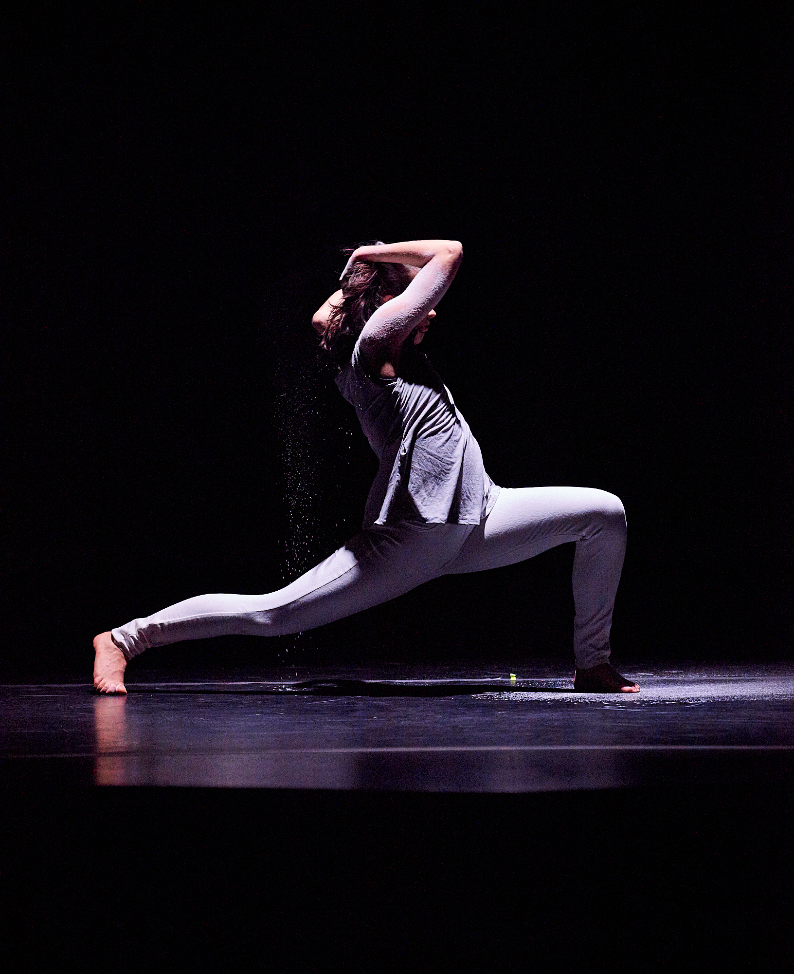 Arch - A Dance Concert. Student dance performances presented by the Colgate Department of Theater, featuring dance performances and senior thesis projects in dance.