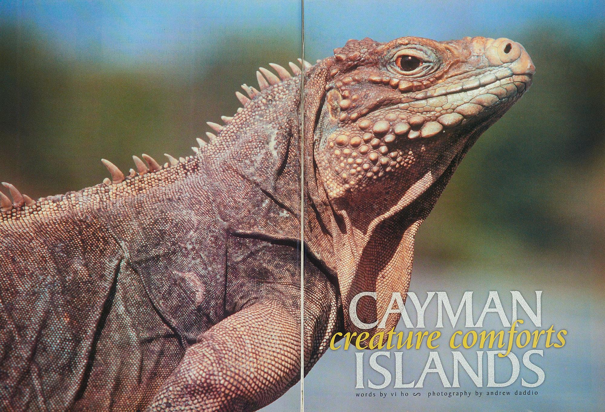 007_Cayman_NWA.jpg