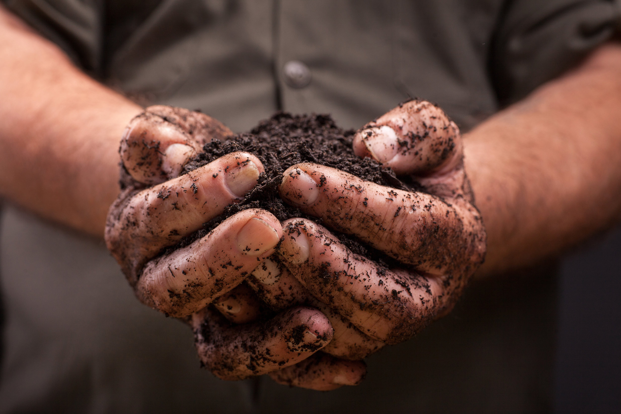 About - Find out about Full Cycle Organics, our methods, our services, and our premium organic compost.