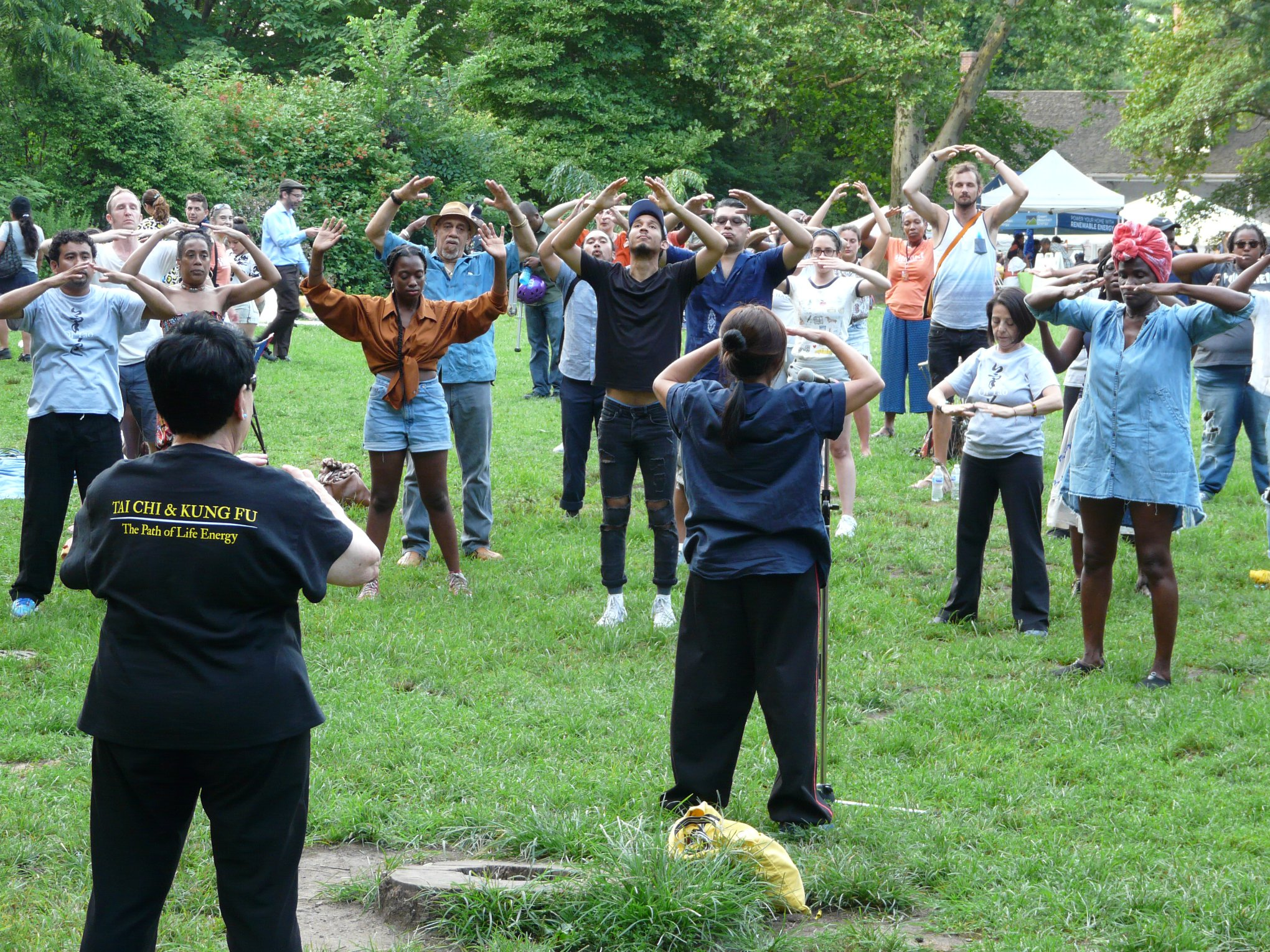 Tai Chi Workshop with Qi Tao - Brooklyn Roots Festival 2018 at Prospect Park