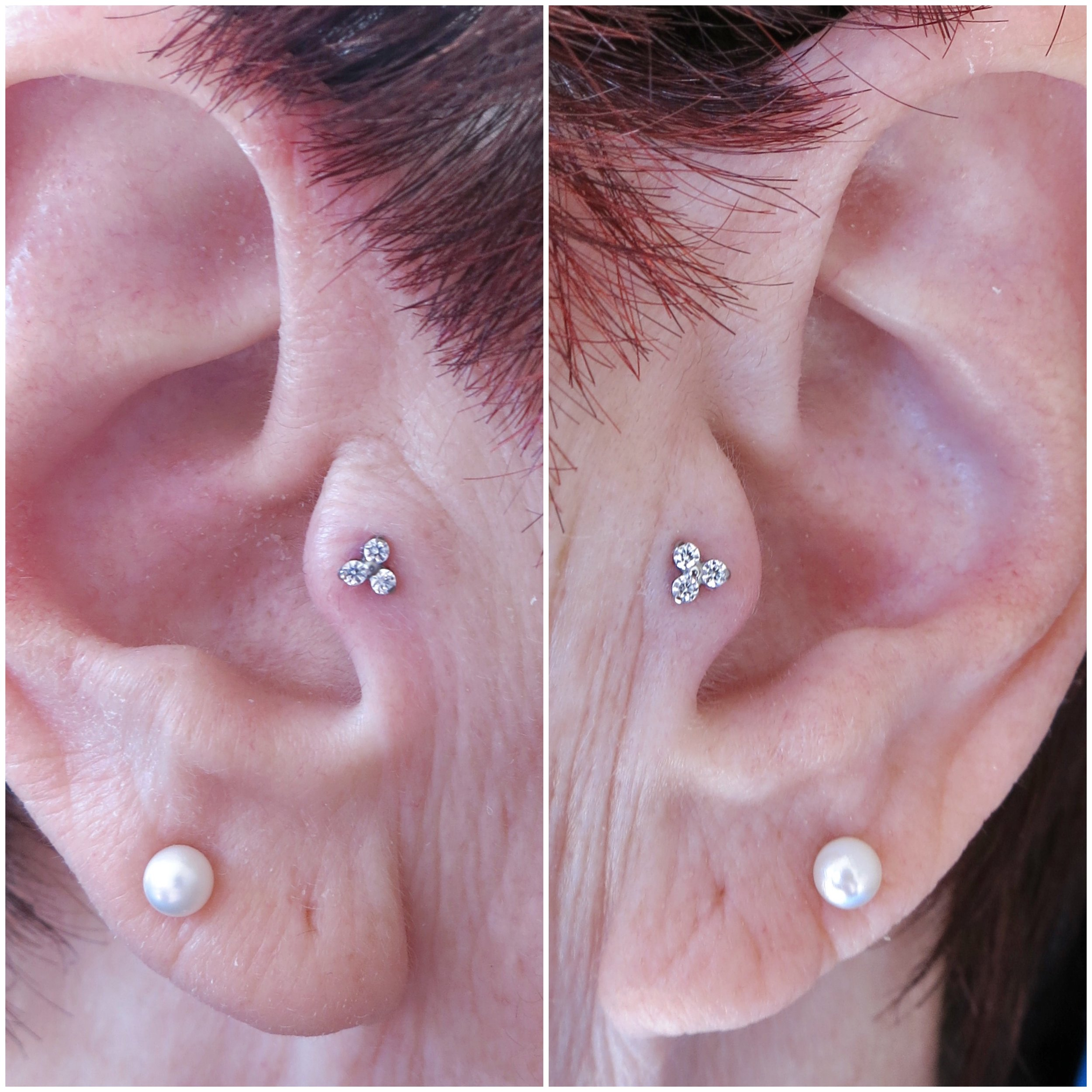 Paired Tragus Piercings