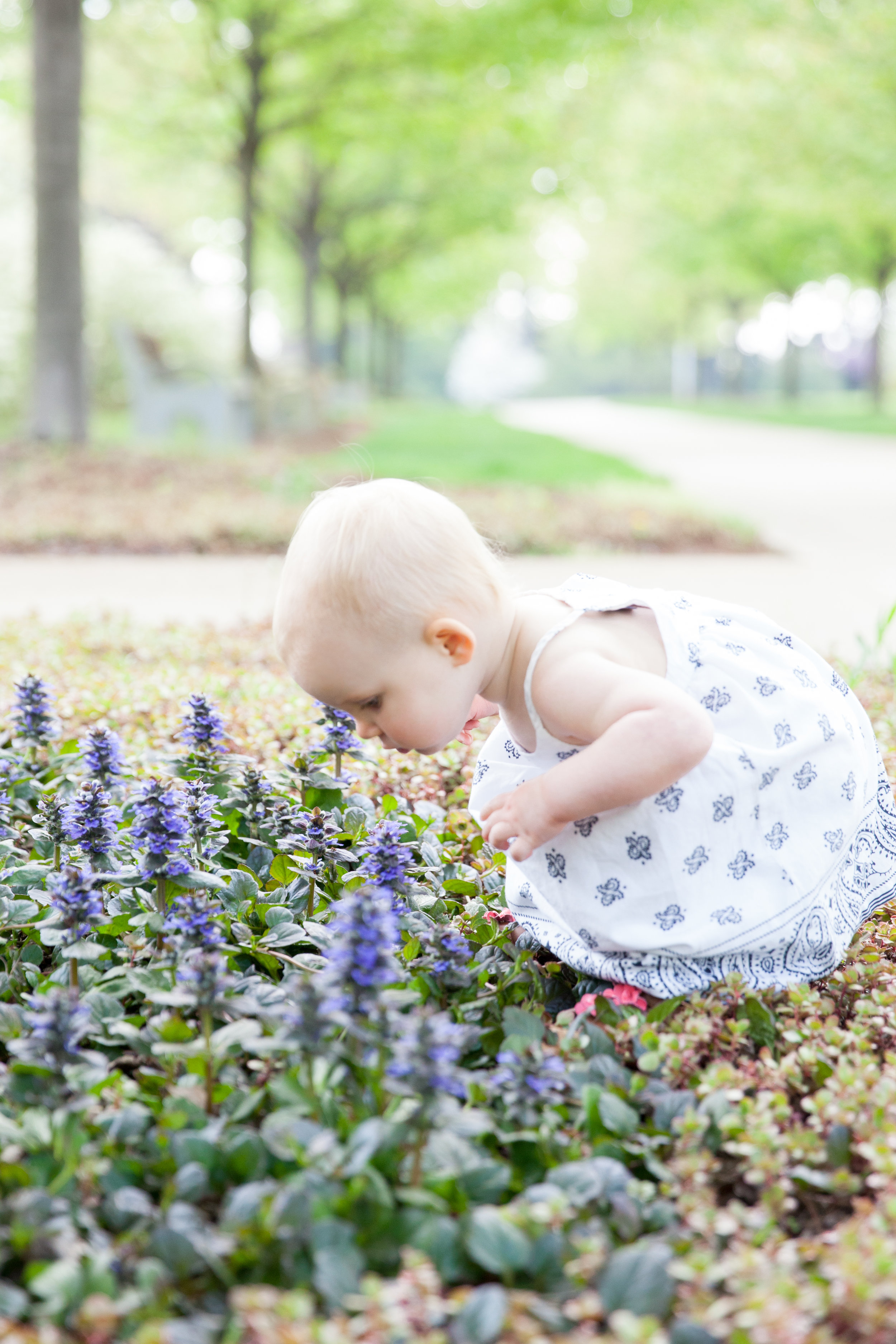 LisaDiederichPhotography_TheWhitmers6month_Blog-6.jpg