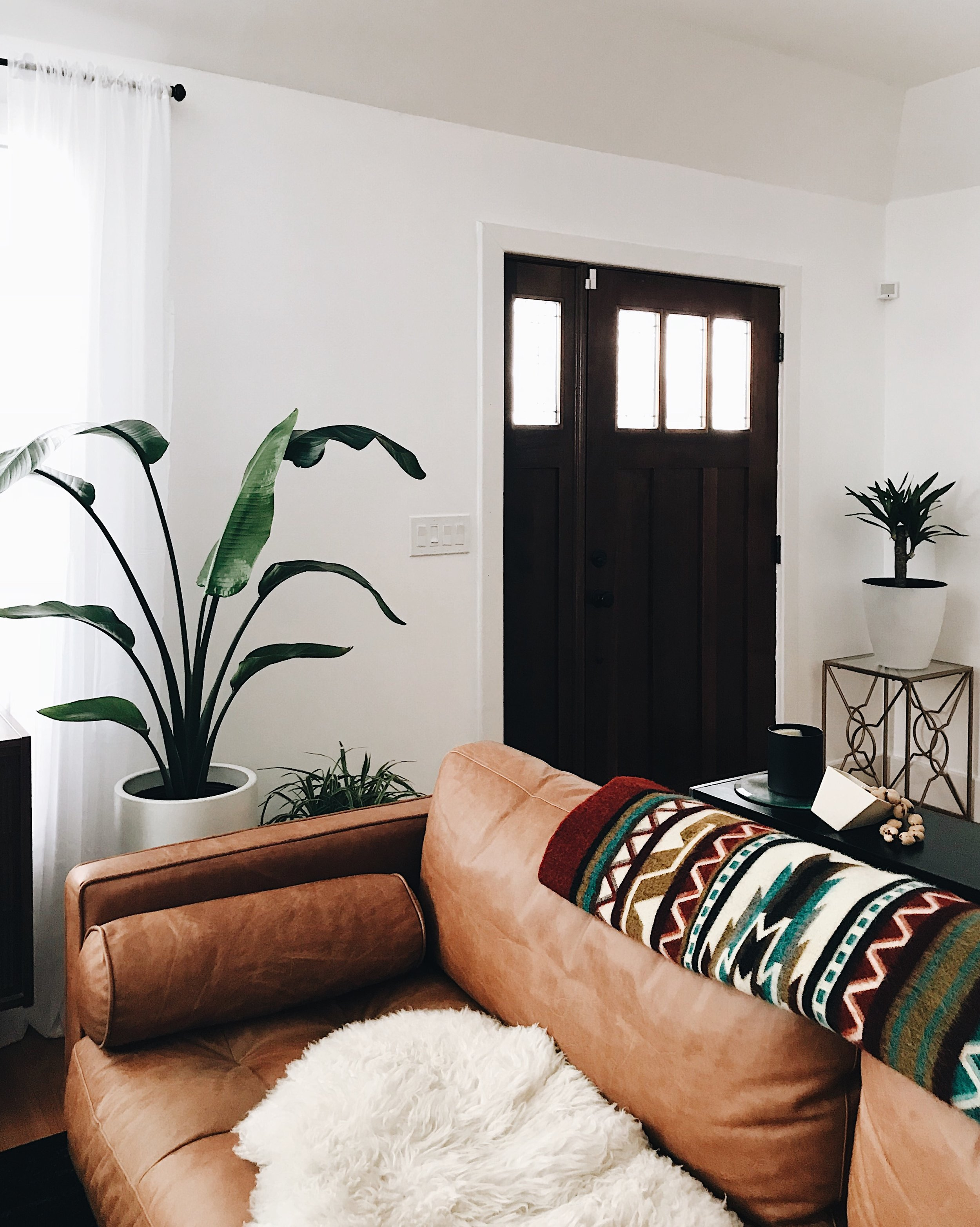 Blanket by  Ecuadane and planters by  Modernica .