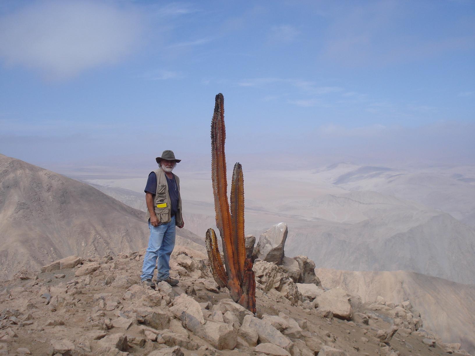 Geología de carreteras - Road geology