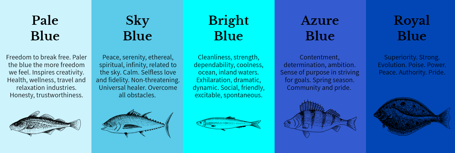 Blue_Infographic1-5.png