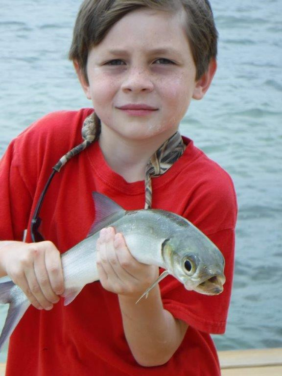 One of the many fish this kid caught off of the pier at the resort.